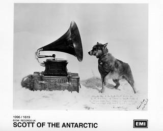 Scott Of The Antarctic - Nipper picture