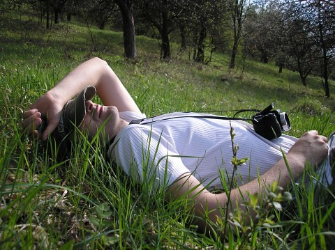 man-relaxing-in-the-grass_8954-480x359 | by Public Domain Photos
