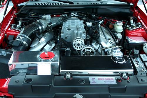 2004 Mustang Cobra Terminator Engine 800x533 Charlie