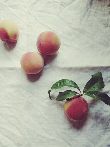 First Peaches | by fieldandsea