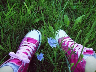 Flickr colors/pink/blue | by AlexandraChise