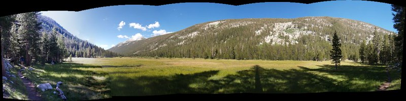 Multi-photo panorama of the upper meadow in Lyell Canyon