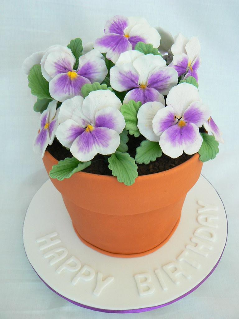Louisa S Cake