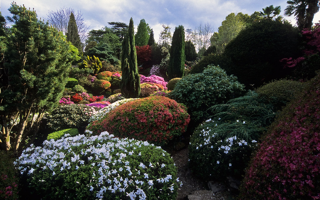 Leonardslee Gardens, West Sussex, England, UK | Leonardsle ...