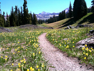Mountain Biking 401 Trail Near Crested Butte | by TRAILSOURCE.COM