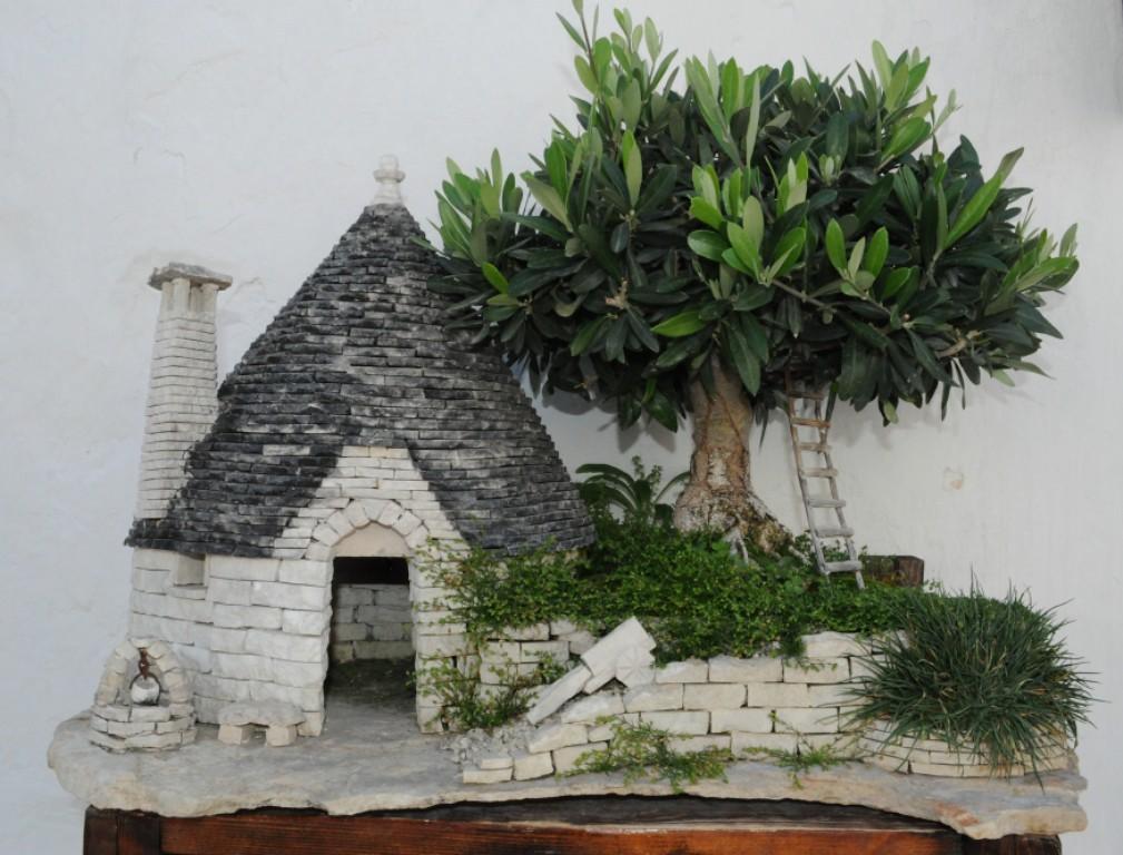 Bonsai ulivo di 40 anni con trullo scheggia foto flickr for Bonsai di ulivo