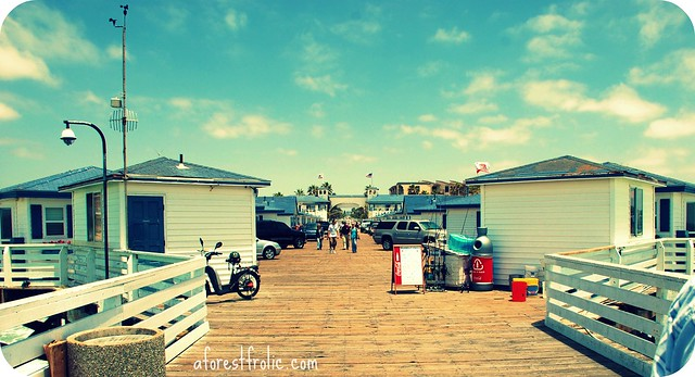 San diego pier houses flickr photo sharing for Pier fishing san diego