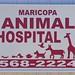 Giraffe's in Maricopa, Arizona?
