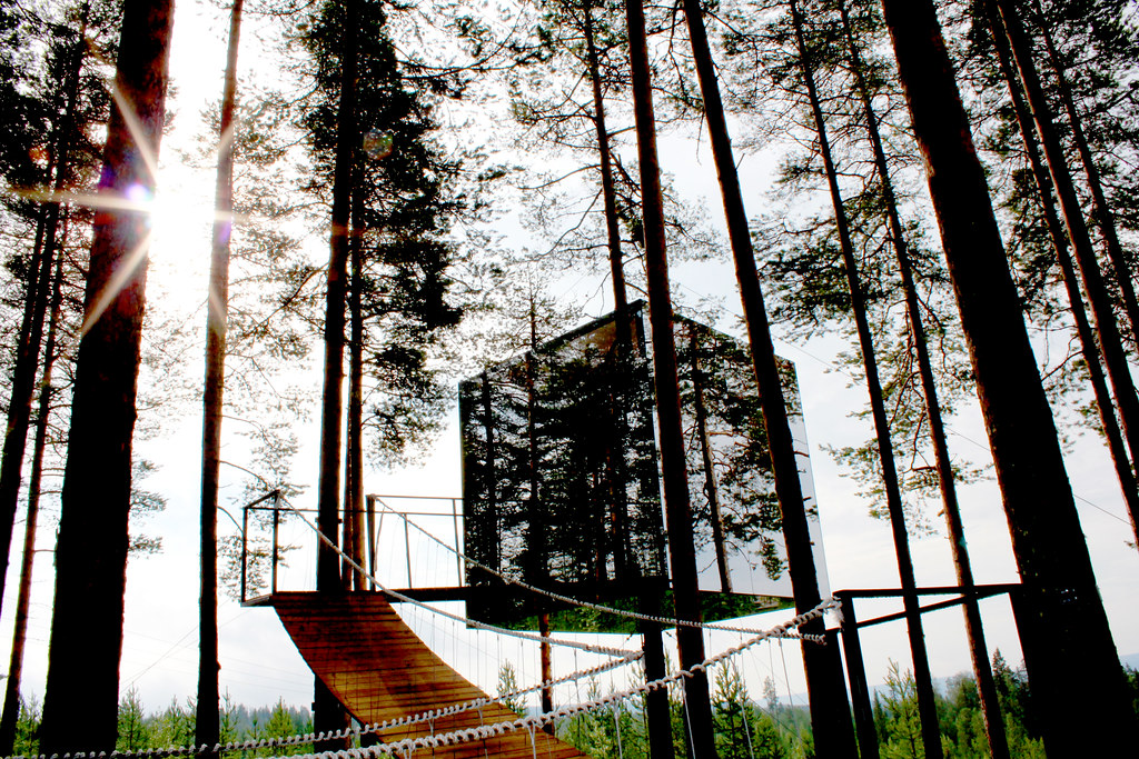 Treehotel 11: Mirrorcube Access