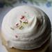 Cupcake w/Vanilla Frosting