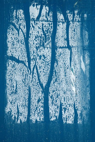 The trees in blue | by robert ragan