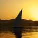 Golden Nile 2