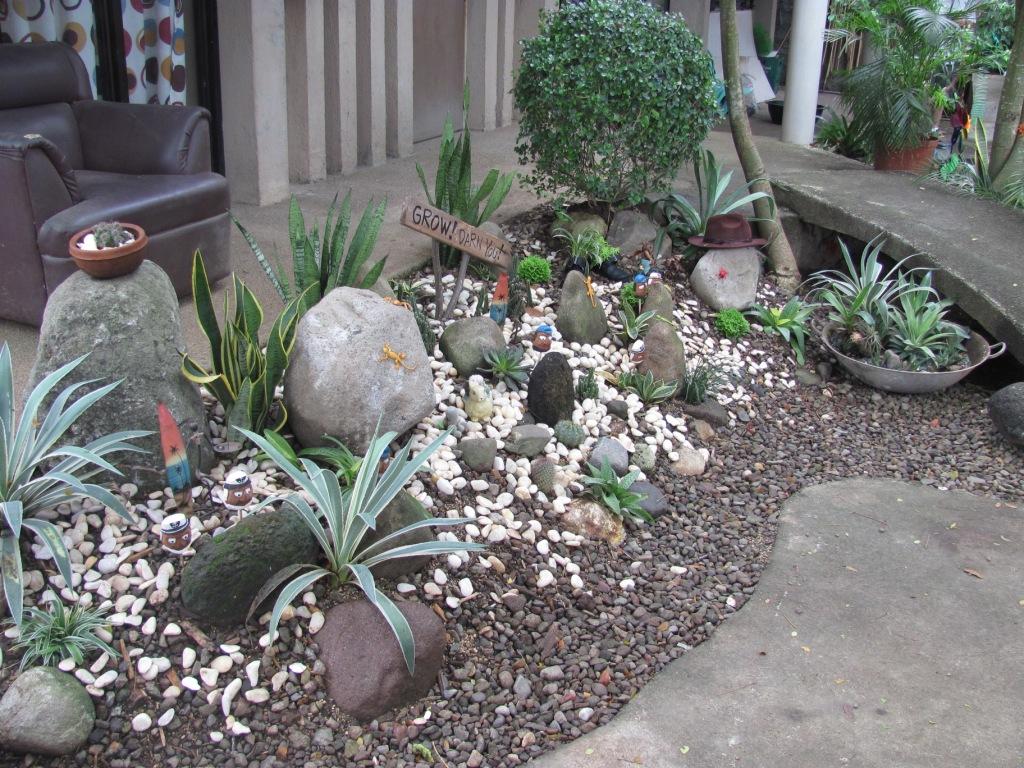 Mini Cactus Garden | By Gravelgardener Mini Cactus Garden | By  Gravelgardener