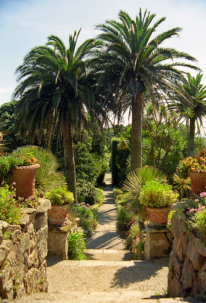 Palm Garden Of West Palm Beach Nursing Home