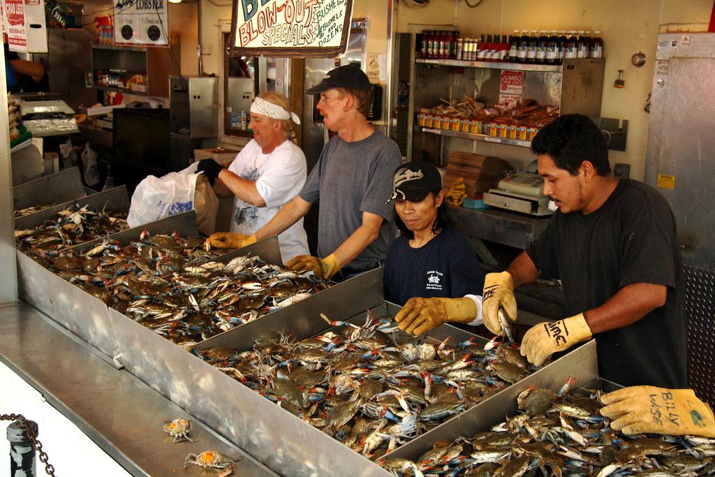 Img 4531 sw fish market washington dc beau finley for Washington dc fish market