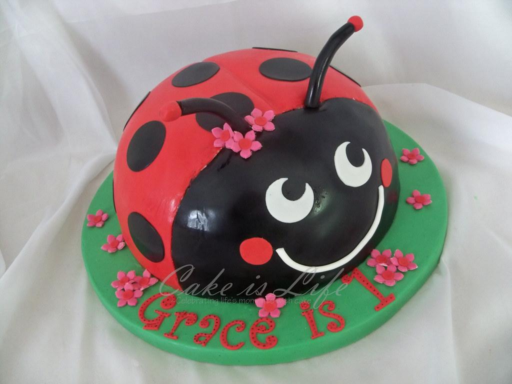 Ladybug Birthday Cake 082010 A Ladybug Inspired By Someo Flickr