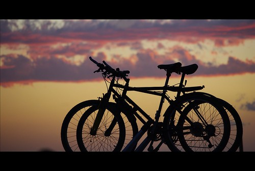 Bikes in love | by Dige