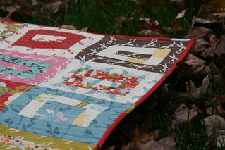 Binding on Wonderland Quilt | by A Quilting Jewel