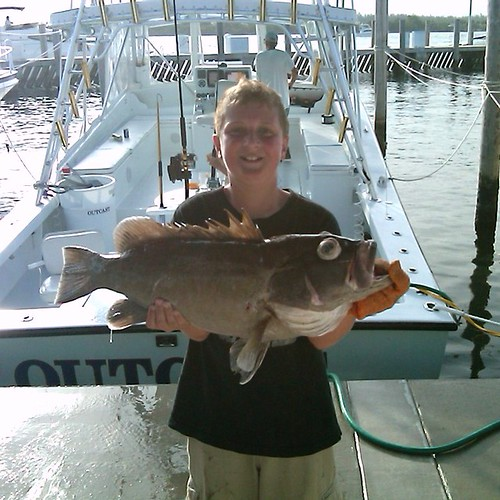 Snowy grouper outcast deep sea sport fishing charters for Hollywood florida fishing charters