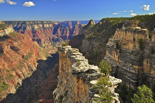 The Transept, North Rim, Grand Canyon National Park | by SteveD.