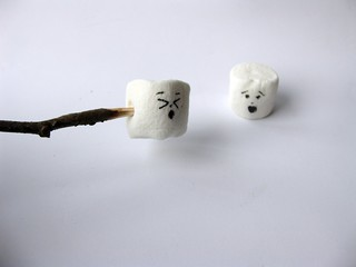 Marshmallow Nightmares!! | by katerha