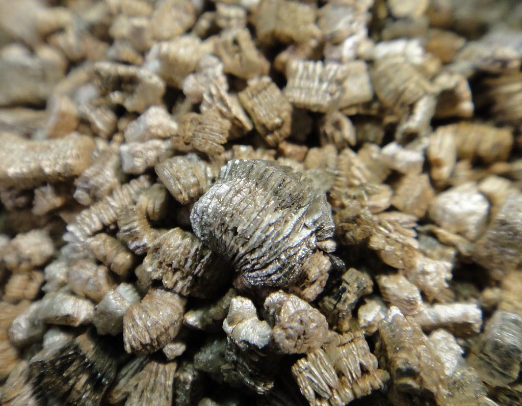 Close Up Terra Lite Vermiculite Sample Close Up View Of