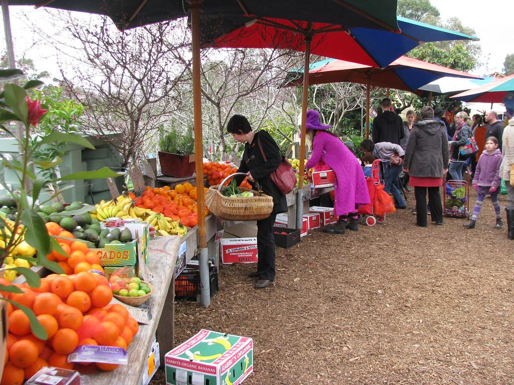 Organic Bulk Food Delivery