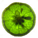 Sometime I Think Life Is Like a Lime