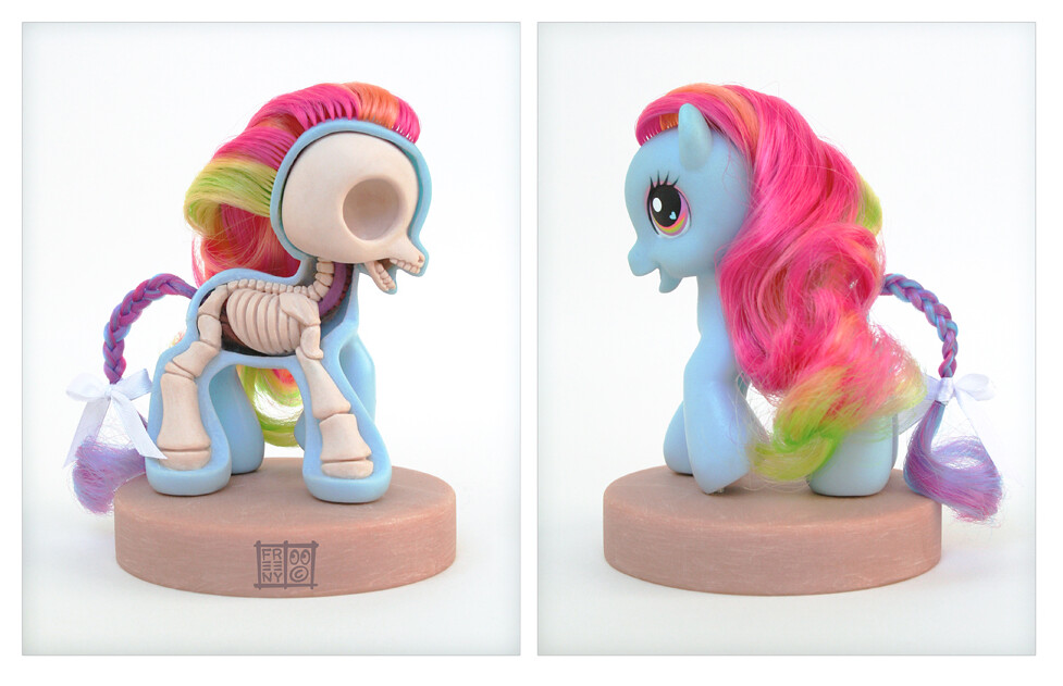 My Little Pony Anatomy By Jason Freeny Posted Via Email Fr Flickr