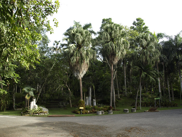 Jardin botanico nacional 1 flickr photo sharing for Jardin botanico nacional