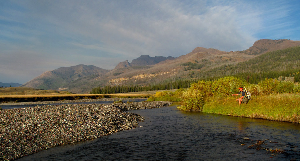Slough Creek, Yellowstone National Park | Fly fishing on ...