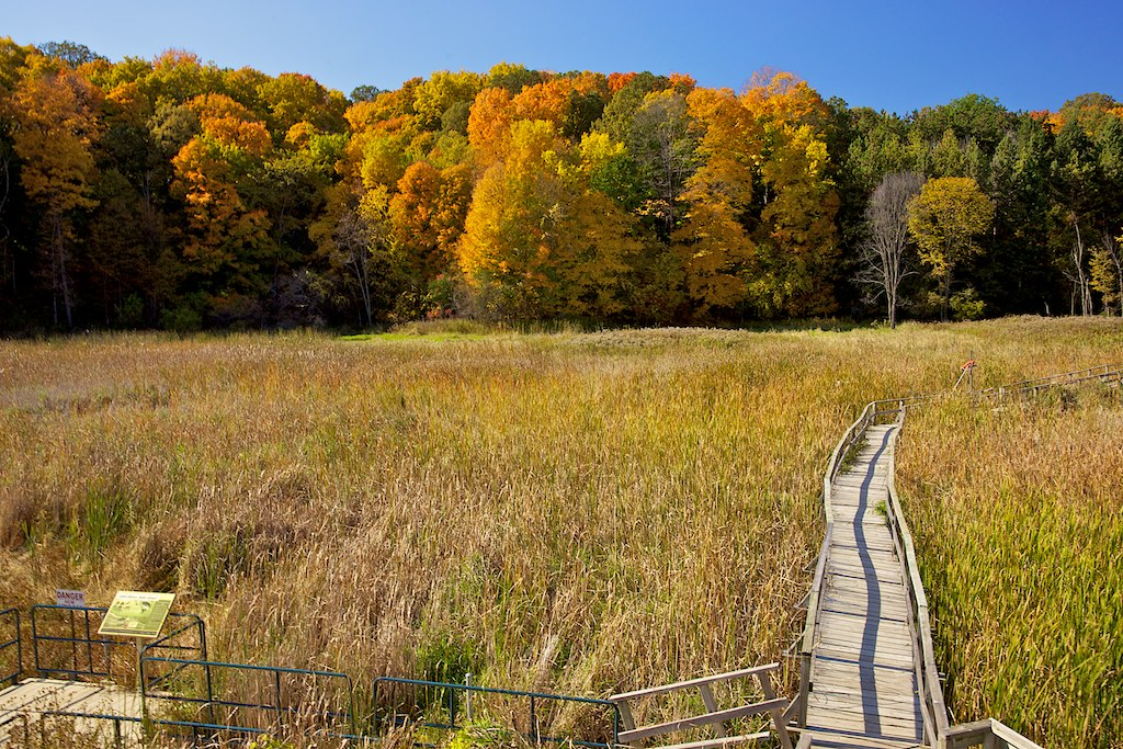 Image result for kortright conservation area