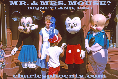 Image Result For Why Does Mickey