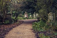 Highgate Old Cemetery