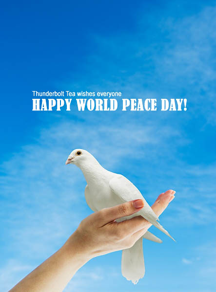 Quotes About World Peace Day: Happy International Peace Day (aka