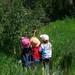 Three kids berry picking