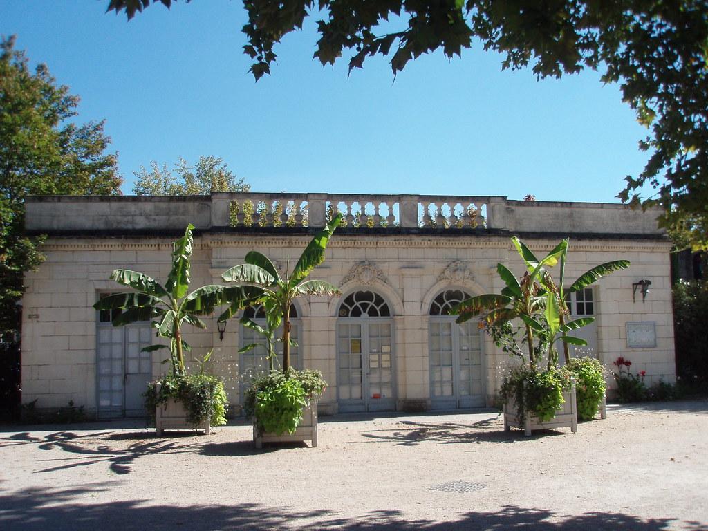 Saintes charente maritime l 39 orangerie du jardin public for Jardin orangerie