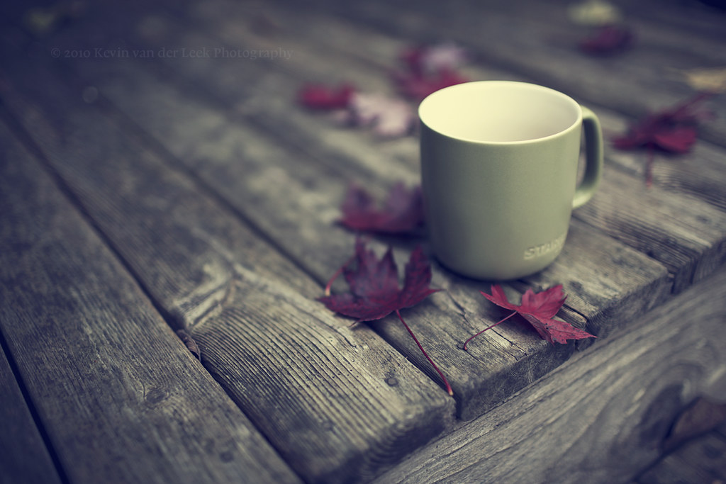 coffee in the fall. | bracing breeze, flannel shirt, hot ...