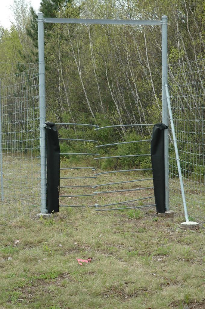 Moose Gate Wildlife Fence And Wildlife Gates Wildlife