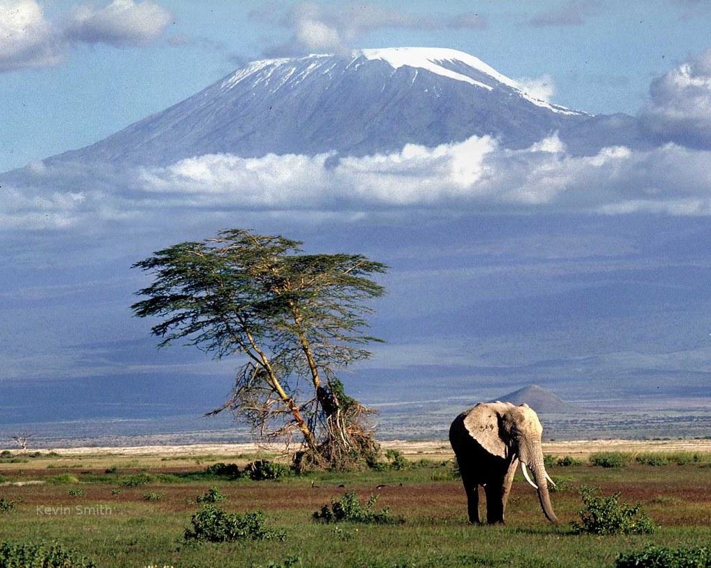 Amboseli National Amboseli National Park