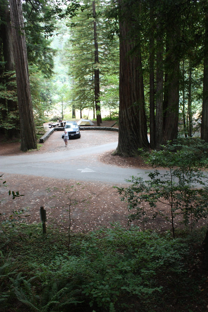 Jedediah Smith Redwood State Park Campground We Camped