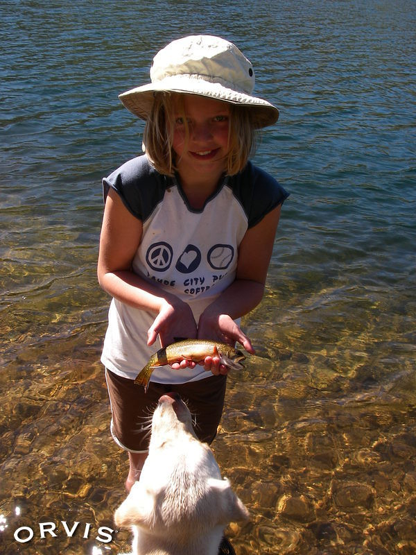 Orvis fly fishing contest kids and dogs brookies for Orvis fly fishing blog