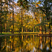 afternoon autumn reflections