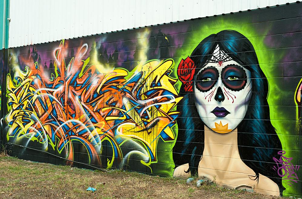 Dia de los muertos mural east cesar chavez street austin for Cesar chavez mural