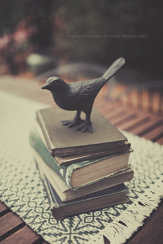 the book bird. | by kvdl