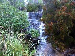 Sur le sentier d'I Scarpi : traversée du ruisseau de Prunu