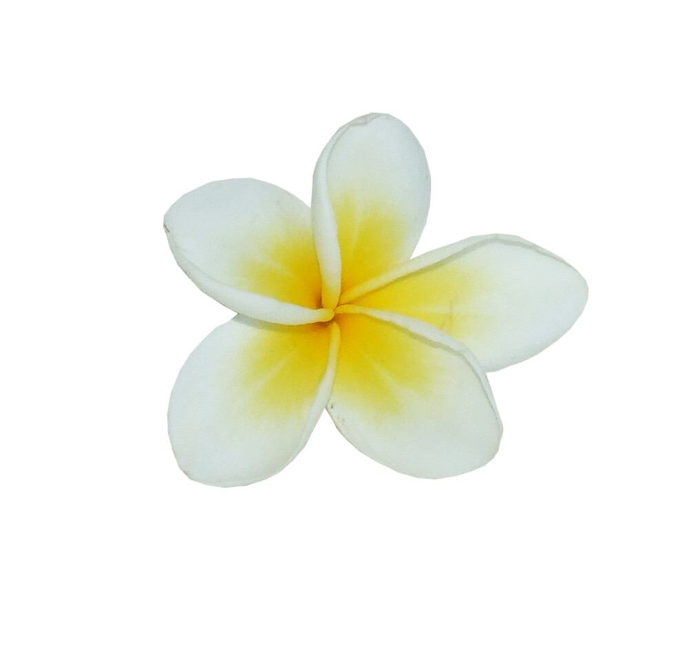 Frangipani * | **I was out in the backyard this afternoon ...