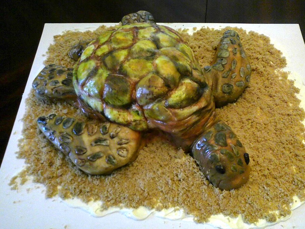 Sea Turtle Cake Made This Today For My Moms Birthday She Flickr