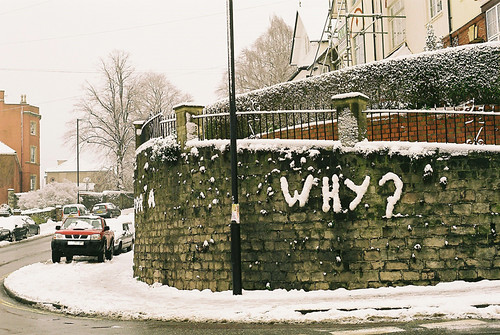 Why? | by Trapac