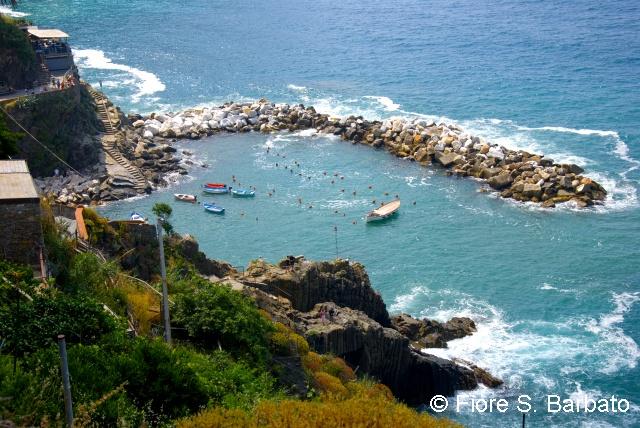Cliff view of the port of Riomaggiore